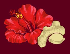 Hibiscus ginger