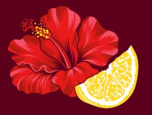 Hibiscus lemon